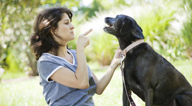 'Woman disciplining dog' from the web at 'http://cdn.ministrytodaymag.com/images/stories/2015/misc/Woman-disciplining-dog.jpg'